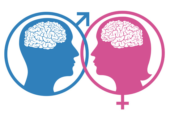 difference between the intelligence of men and women